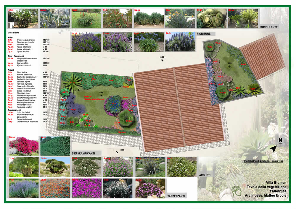 Progettazione di un giardino pensile e della sistemazione for Disegnare un giardino